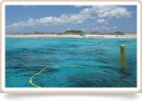 Basiscursus duikgeneeskunde deel 2 Bonaire