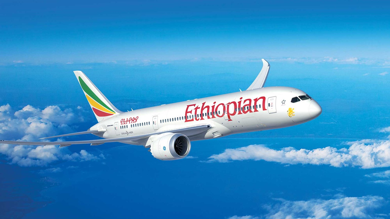 Ethiopian Boeing 787 flight
